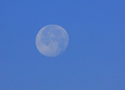 Daylight moon (Wikimedia Commons)