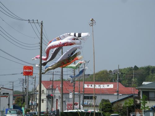 (Carp streamers above Tsutsumi, Chigasaki: Photo by M)
