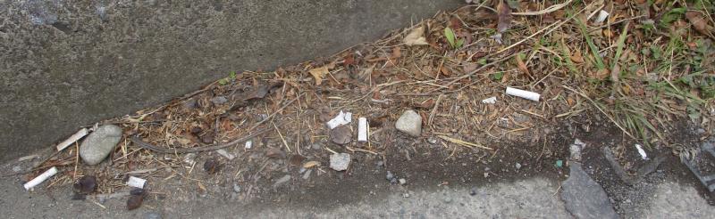 Kerbside trash