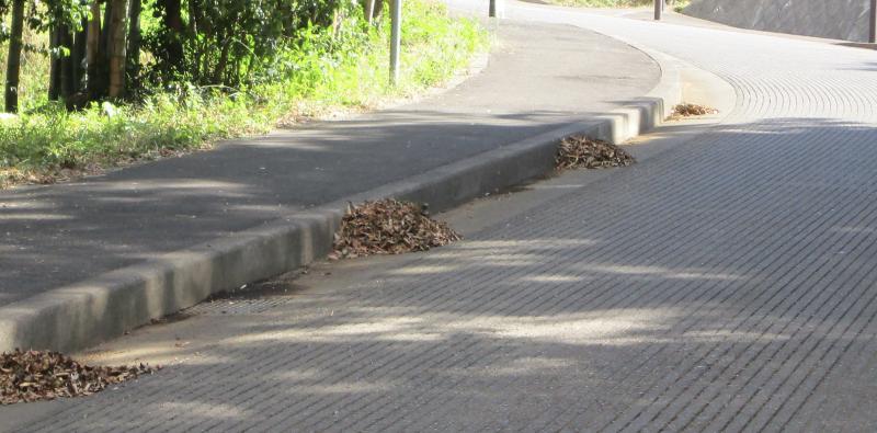 Sweep hillside