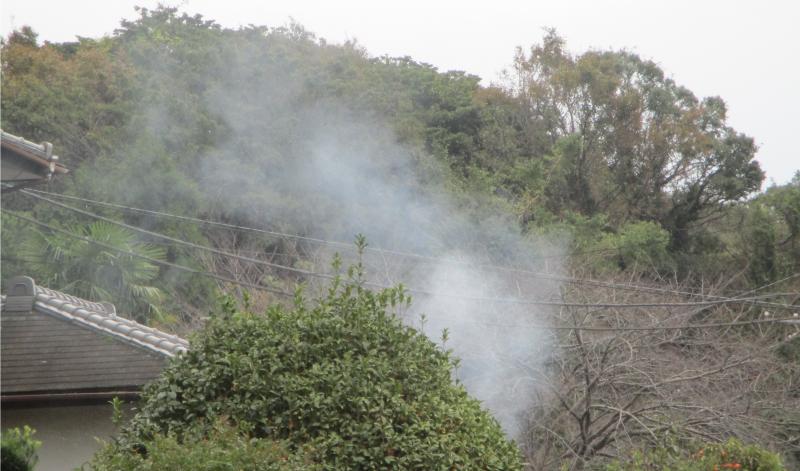 Bamboo burning