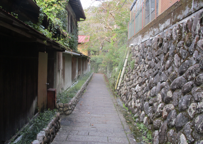 Bamboo drainpipe